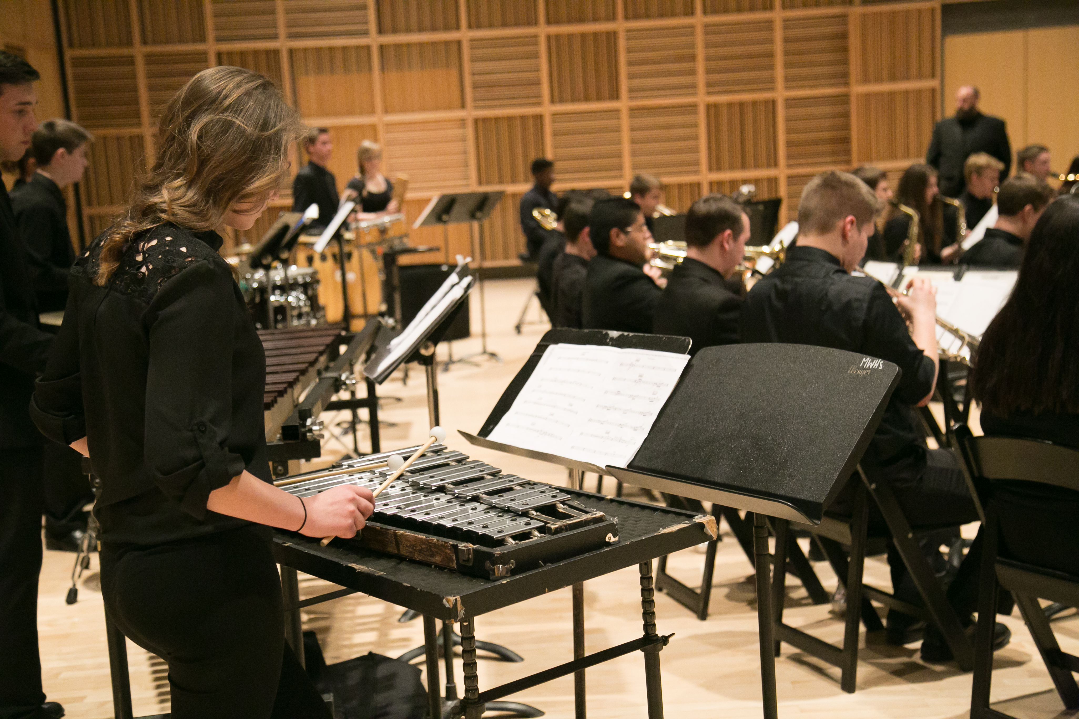 2016-April-7_Band Day at the Holland 019