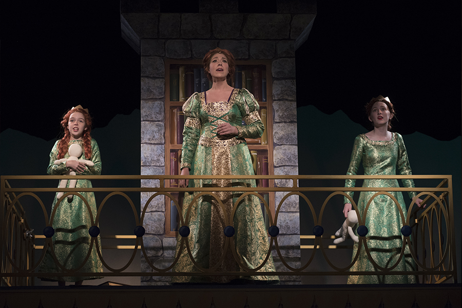 cast of shrek the musical on stage
